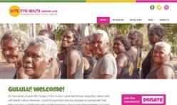 Hope for Health Website